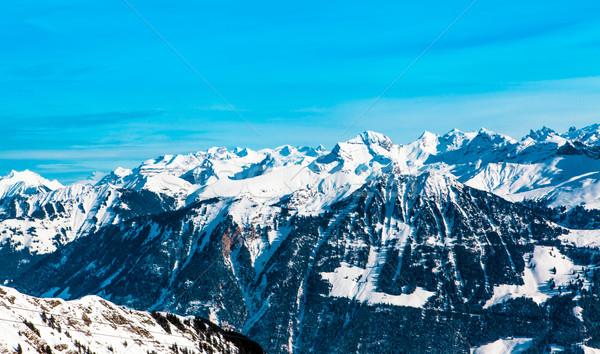 Kış sezonu manzara ağaç doğa kar dağ Stok fotoğraf © EwaStudio