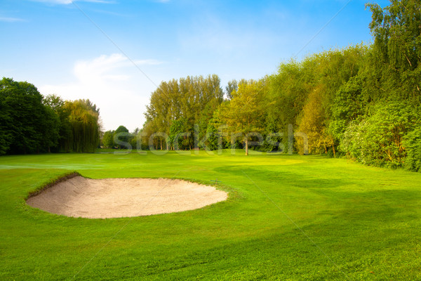 Golfbaan hemel boom wolken gras golf Stockfoto © EwaStudio