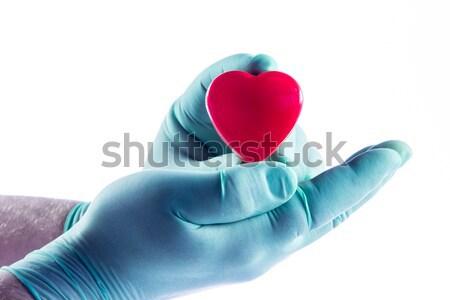 Médico médico coração seguro de saúde saúde Foto stock © EwaStudio