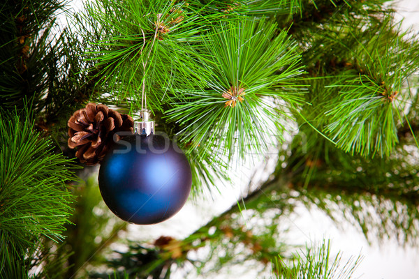 Vidám karácsony fa háttér zöld piros Stock fotó © EwaStudio