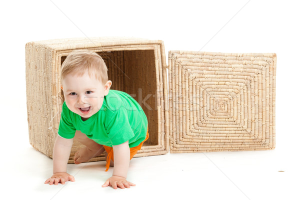 little boy  inside a box on a white background Stock photo © EwaStudio