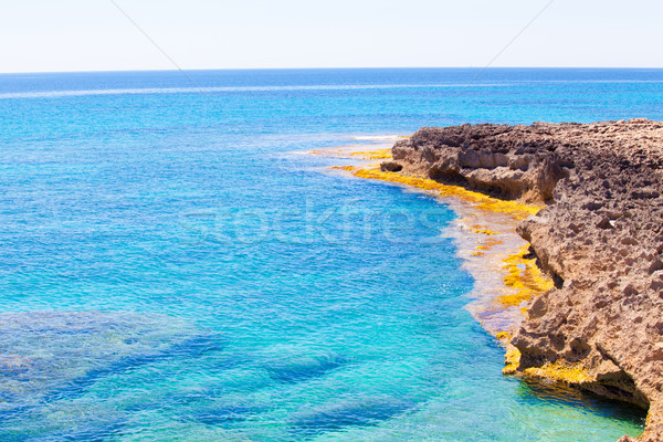 Cap de Ses Salines.  Balearic Islands Stock photo © EwaStudio
