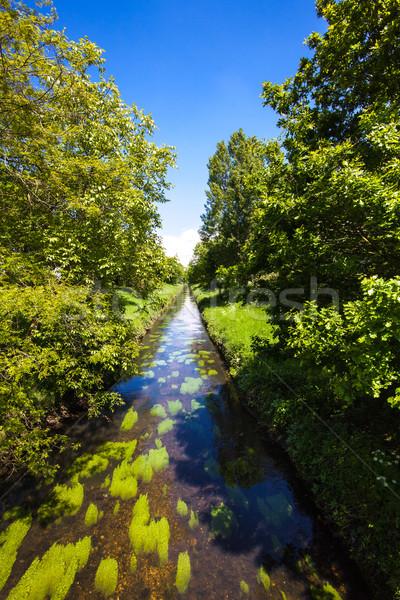 Zomer rivier heldere blauwe hemel wolken voorjaar Stockfoto © EwaStudio