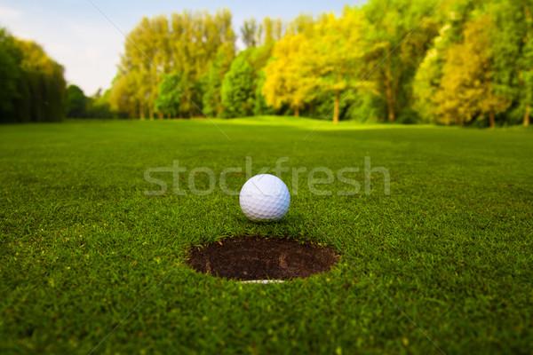 Golfball Lippe Tasse Golf Sport grünen Stock foto © EwaStudio