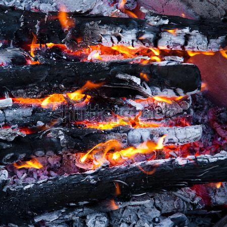 Burning wood and coal in fireplace.  Closeup of hot burning wood Stock photo © EwaStudio