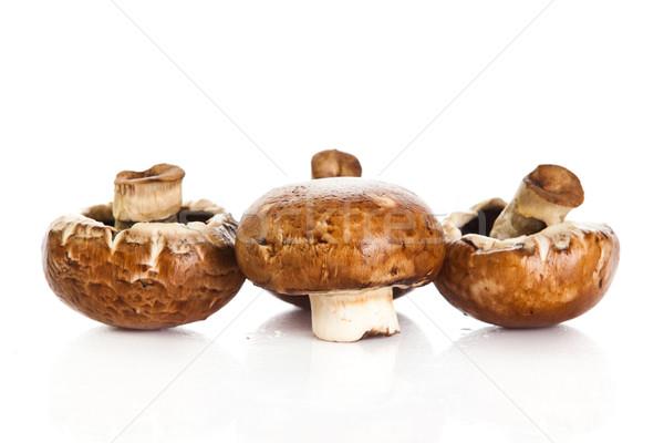 Taze mantar champignon yalıtılmış beyaz gıda Stok fotoğraf © EwaStudio