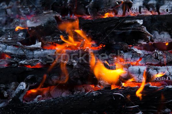 Brucia legno carbone camino primo piano caldo Foto d'archivio © EwaStudio