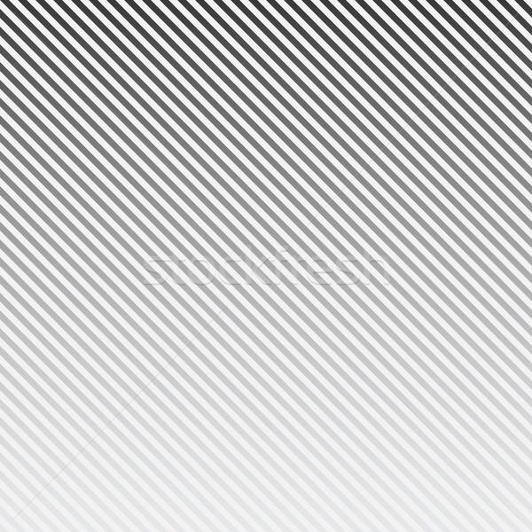Vektor csíkos átló vonalak minta feketefehér Stock fotó © ExpressVectors