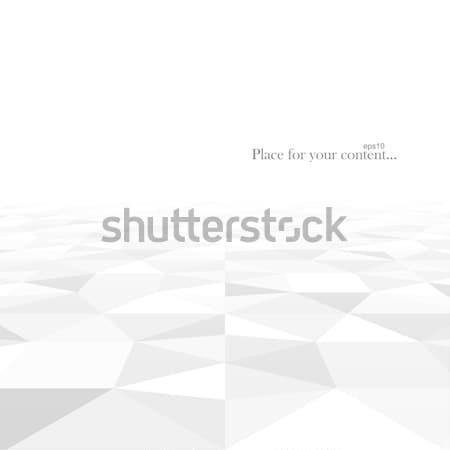Gradient géométrique résumé blanche gris Photo stock © ExpressVectors