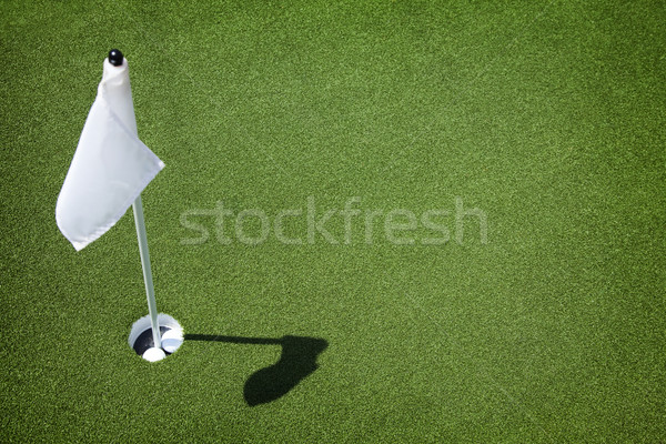 Golf Course Green - Hole and Flag Stock photo © eyeidea