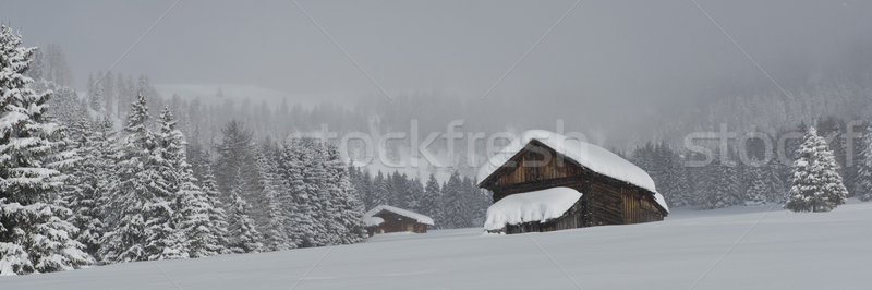 Ağaçlar kar pastoral manzara dağ Kayak Stok fotoğraf © faabi