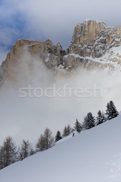 雪 雲 のどかな パノラマ 森林 山 ストックフォト © faabi