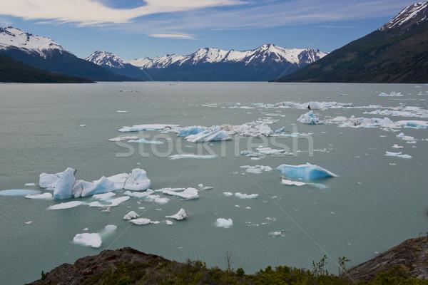 Jéghegy lebeg tó látványos kék park Stock fotó © faabi