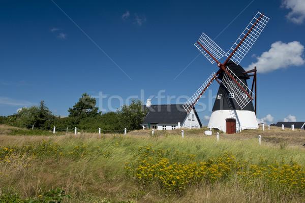 Szélmalom sziget tenger park Dánia díszlet Stock fotó © faabi