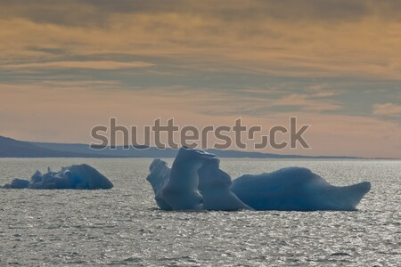 Iceberg floating on the Lake Argentino Stock photo © faabi