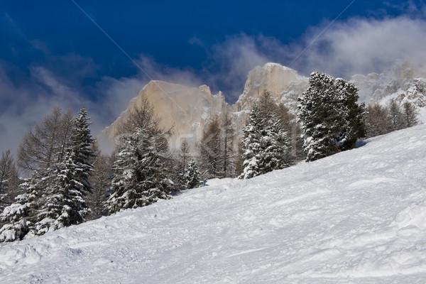 Neve nuvens idílico panorama floresta montanha Foto stock © faabi