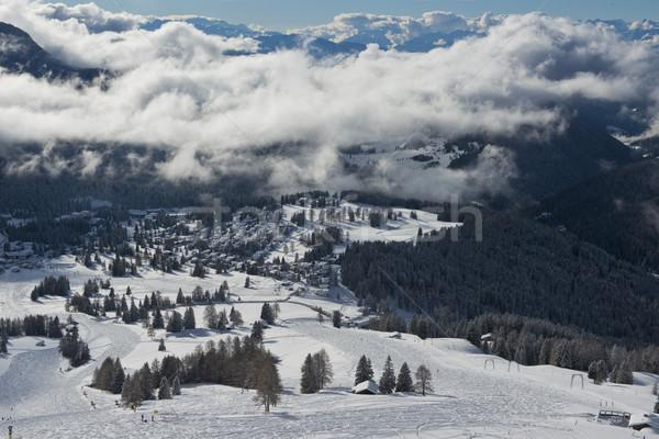 冬 風景 のどかな パノラマ 森林 雪 ストックフォト © faabi