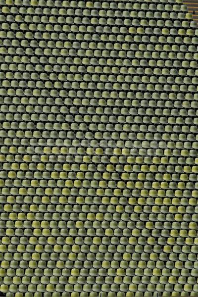 Stadyum yeşil sandalye boş kimse Stok fotoğraf © faabi