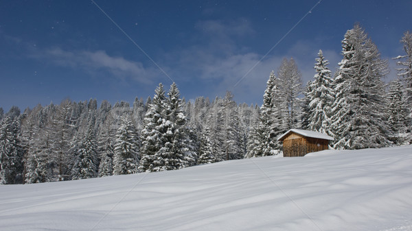 Chalet in Val di Fassa Stock photo © faabi