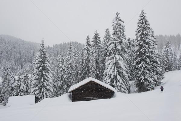árvores neve idílico paisagem montanha esquiar Foto stock © faabi