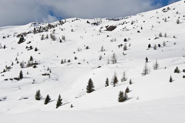 Stok fotoğraf: Kış · manzara · pastoral · panorama · kar · dağ