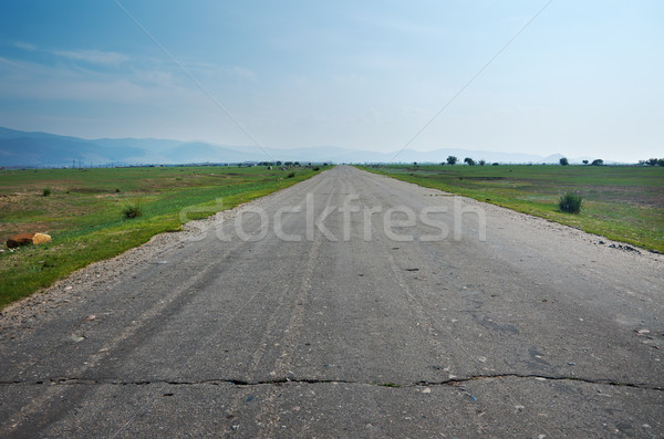 Old rural road Stock photo © fanfo