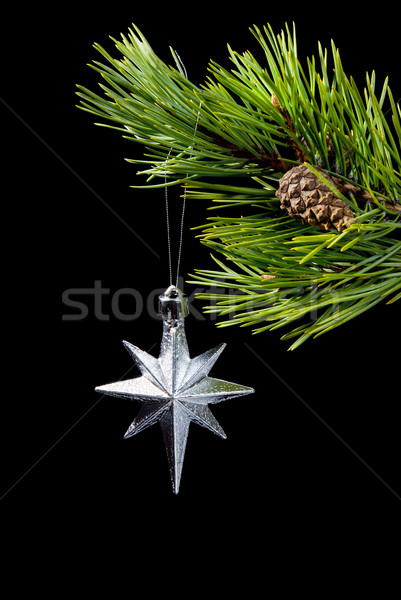 silver star,asterisk cristmas Stock photo © fanfo