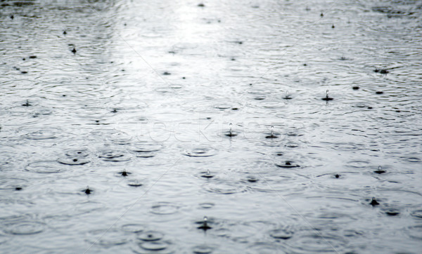 Stock photo: Rain drops rippling in a puddle .
