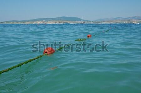 Line boa mare acqua panorama Foto d'archivio © fanfo
