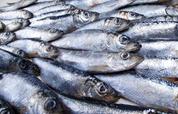 Fresh herring Close-up Stock photo © fanfo