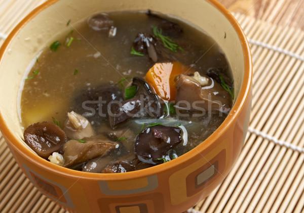 русский кислая капуста суп грибы Pearl ячмень Сток-фото © fanfo