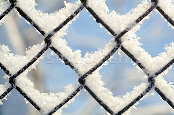 freezing patterns, winter Stock photo © fanfo