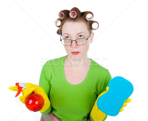 Ménagère soubrette propre éponge spray maison Photo stock © fanfo