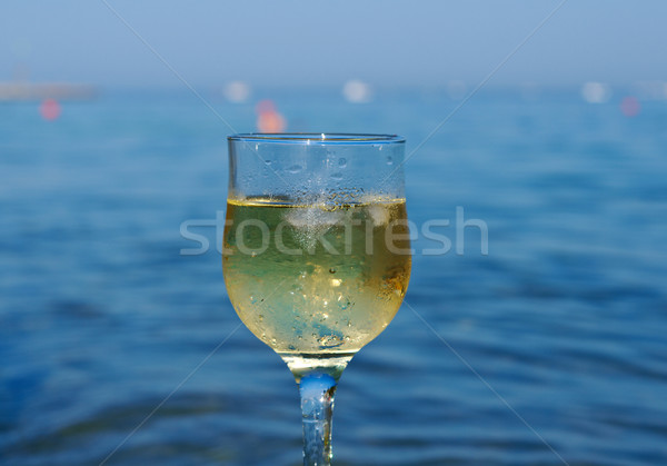 Glass of white wine by the coast Stock photo © fanfo