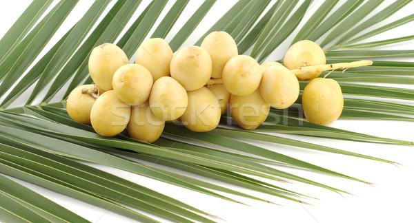 Natürmort palmiye yaprağı gıda orman palmiye şeker Stok fotoğraf © farres