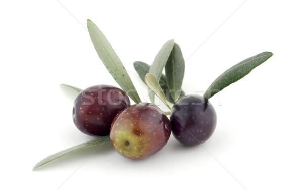Olives laisse blanche nature fruits santé Photo stock © farres