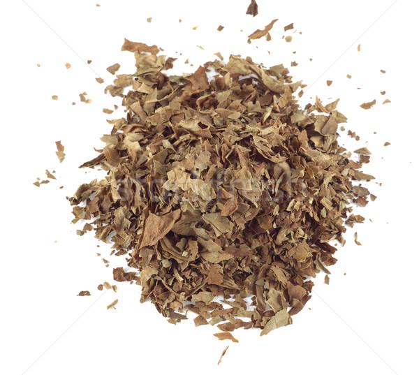 Tabaco hojas naturaleza hoja Foto stock © farres