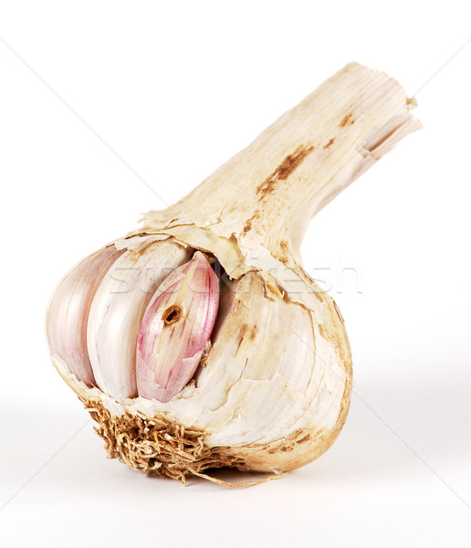 Garlic in a bad state Stock photo © farres