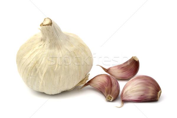 Garlics Stock photo © farres