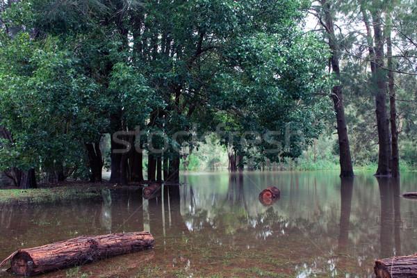 Inundação Sydney norte praia custo inteiro Foto stock © fatalsweets