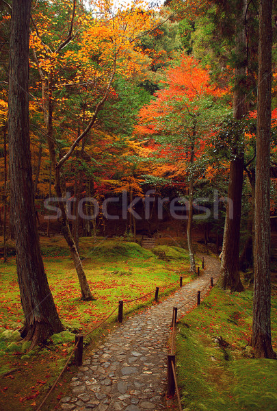 Japanese Garden Stock photo © fatalsweets