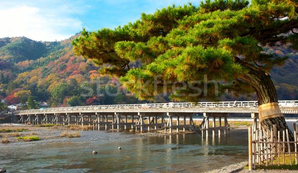 風景 京 秋 日本 空 建物 ストックフォト © fatalsweets