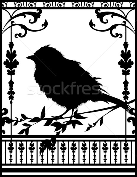 One Little Black Bird Stock photo © fatalsweets