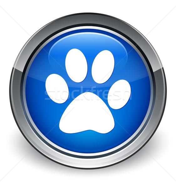 állat lábnyom ikon fényes kék gomb Stock fotó © faysalfarhan