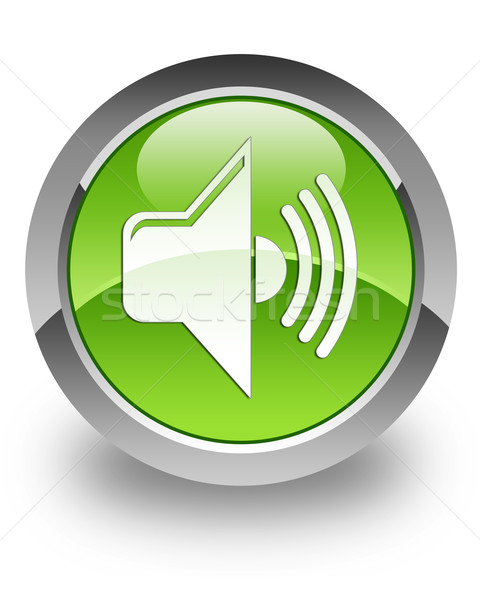 Hacim parlak ikon yeşil bilgisayar konuşmacı Stok fotoğraf © faysalfarhan