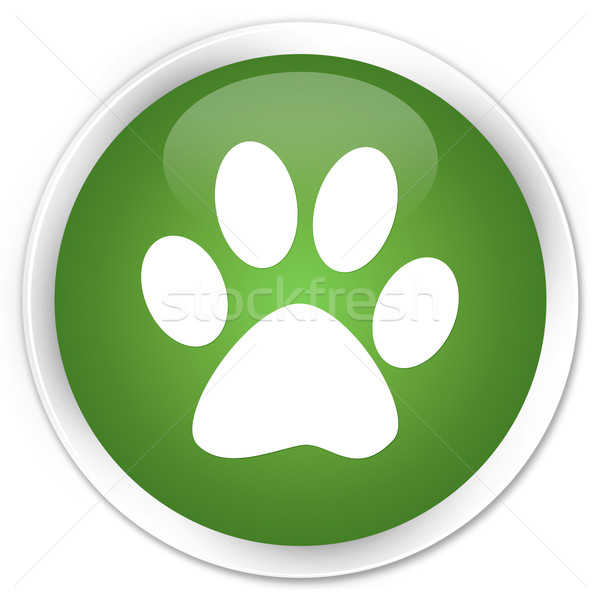 Animal footprint green button Stock photo © faysalfarhan
