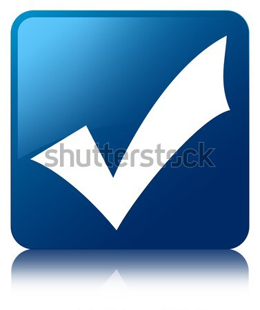 Validation icon glossy blue reflected square button Stock photo © faysalfarhan