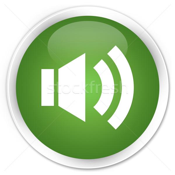 Volume icône vert bouton web radio Photo stock © faysalfarhan