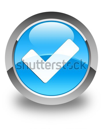 Validate icon glossy blue button Stock photo © faysalfarhan