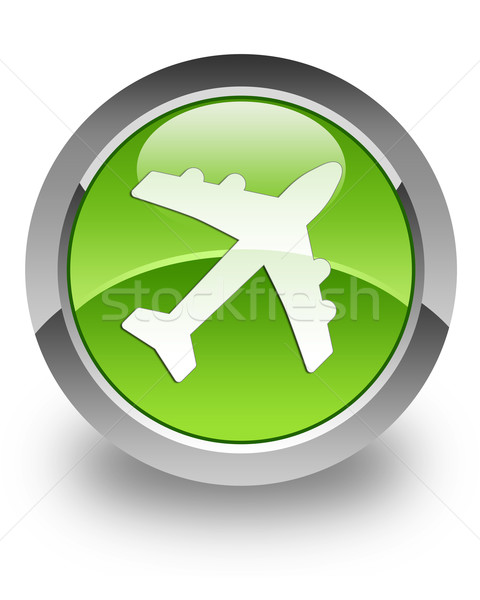 Airplane glossy icon Stock photo © faysalfarhan